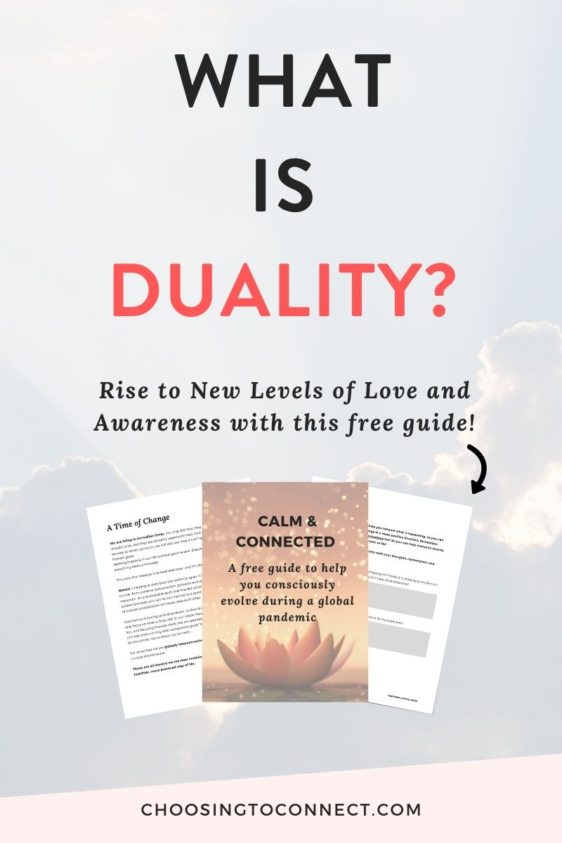 What is duality?